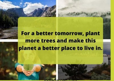 World Environment Day message in english